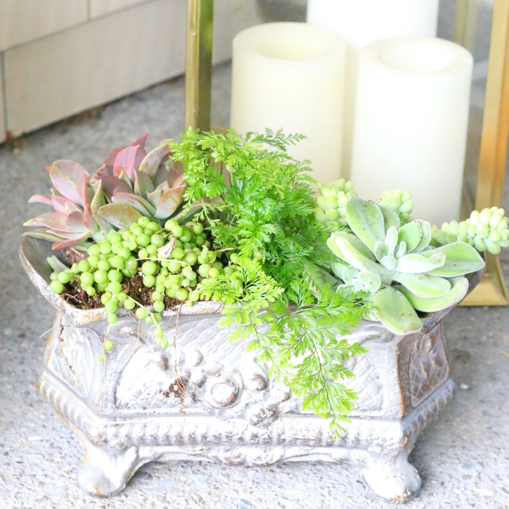 front porch decorating ideas with succulents