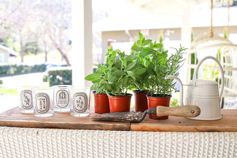 DIY: Repurposing Candle Jars for an Indoor Herb Garden