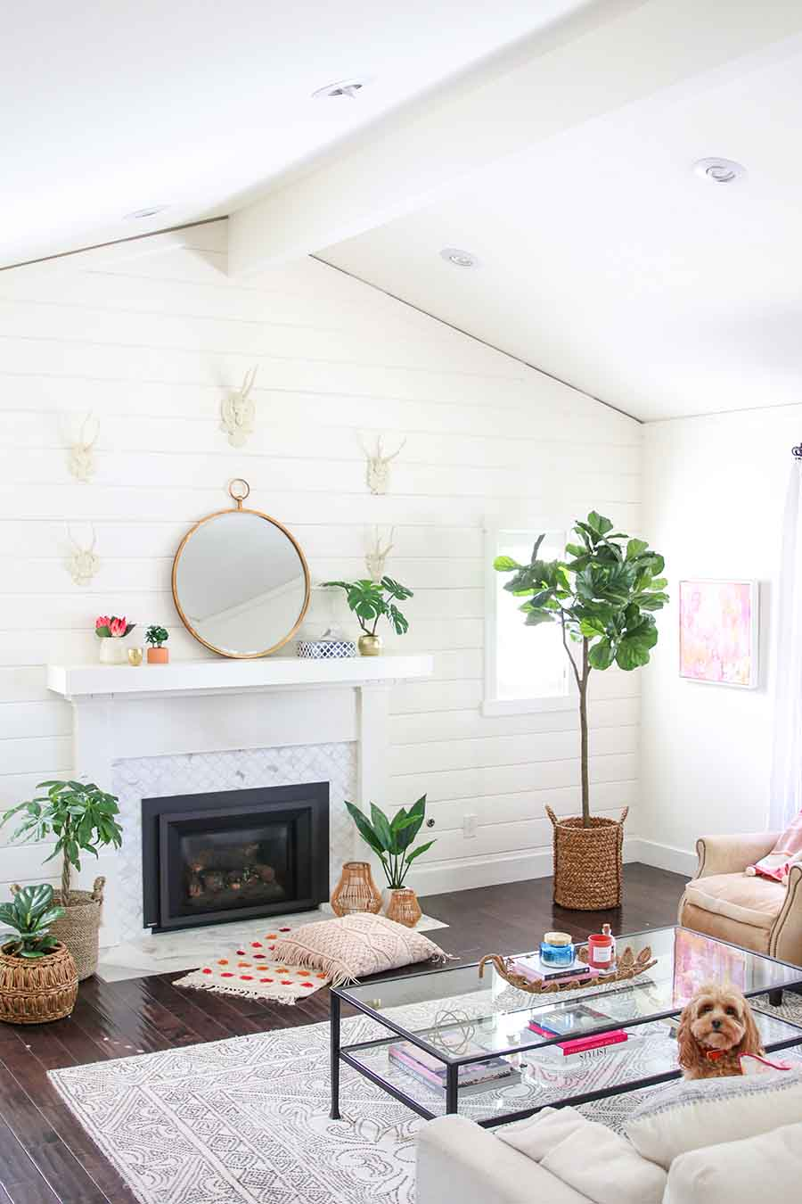 Sunroom Decorating Boho