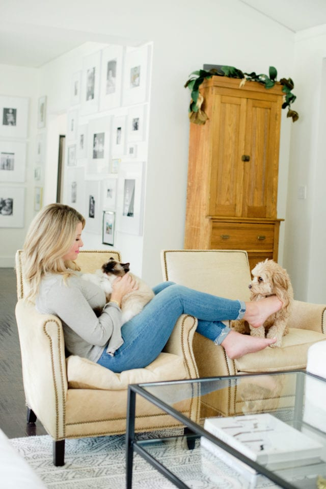 sitting in chair with cat and dog