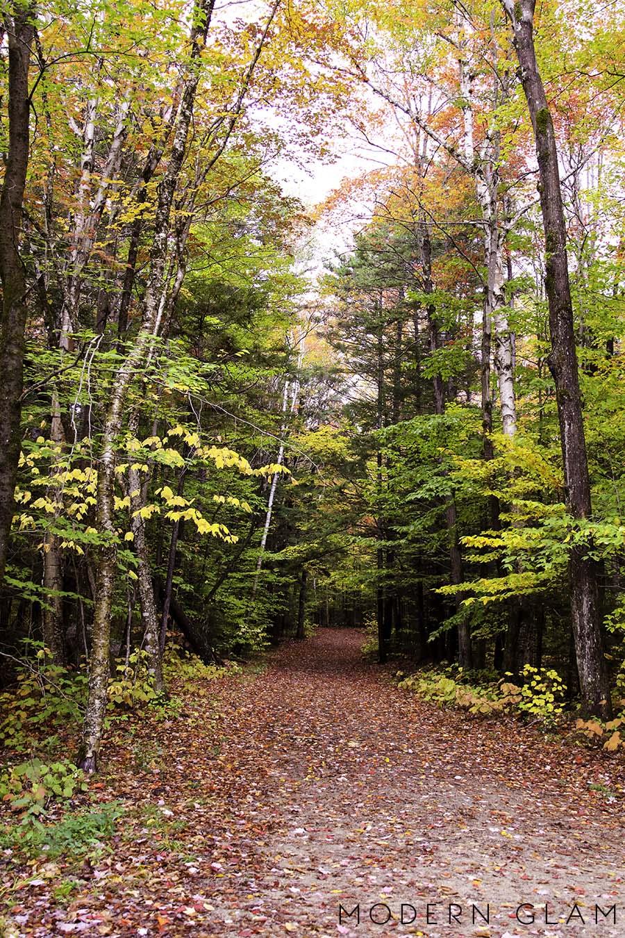 Vermont trails