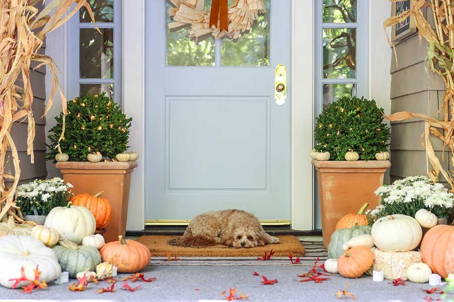 Neutral fall porch with white pumpkins