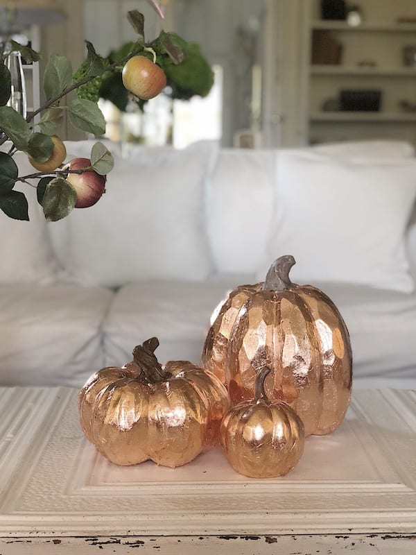 copper leaf pumpkins