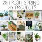 spring diy project