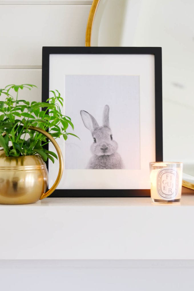 Black and White Bunny Printable