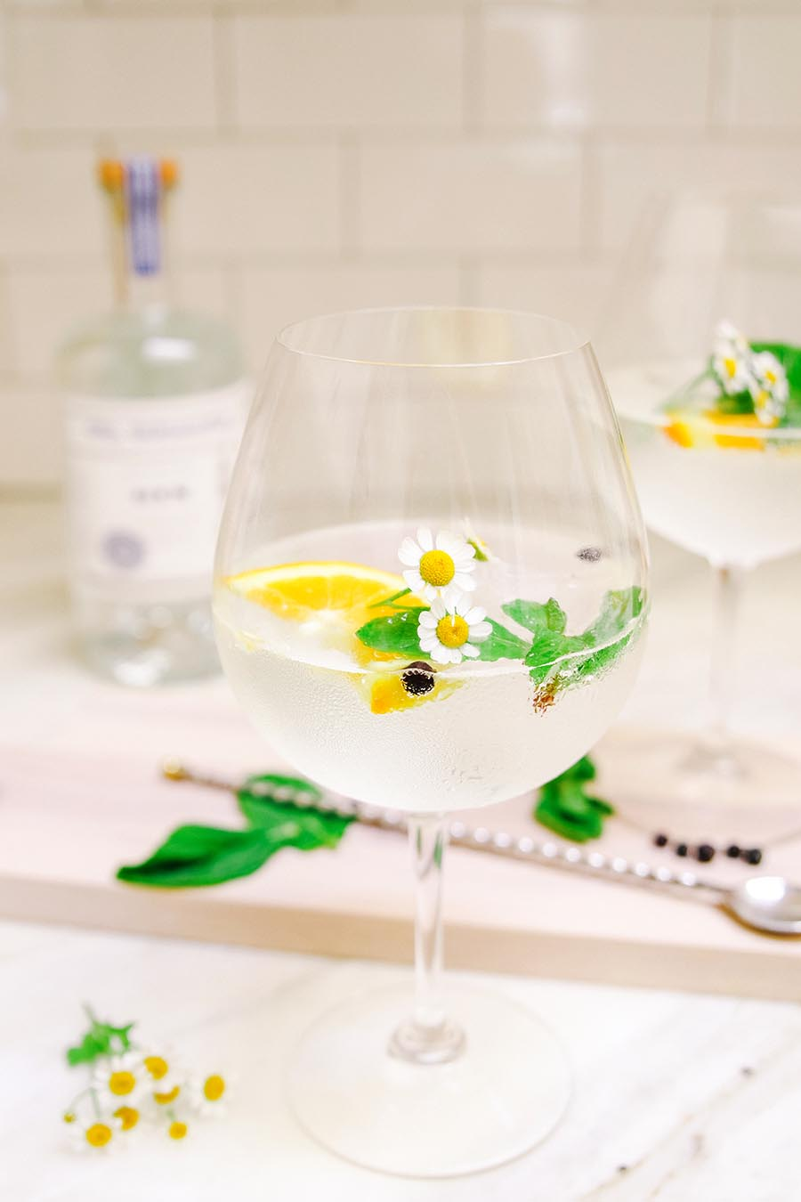 spanish gin and tonic recipe