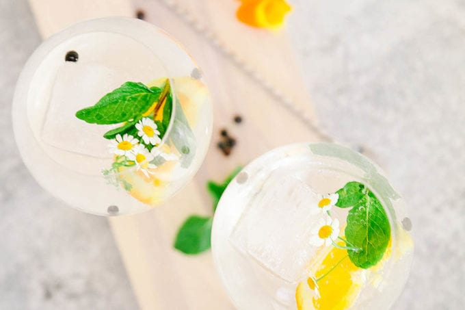 gin and tonic recipe