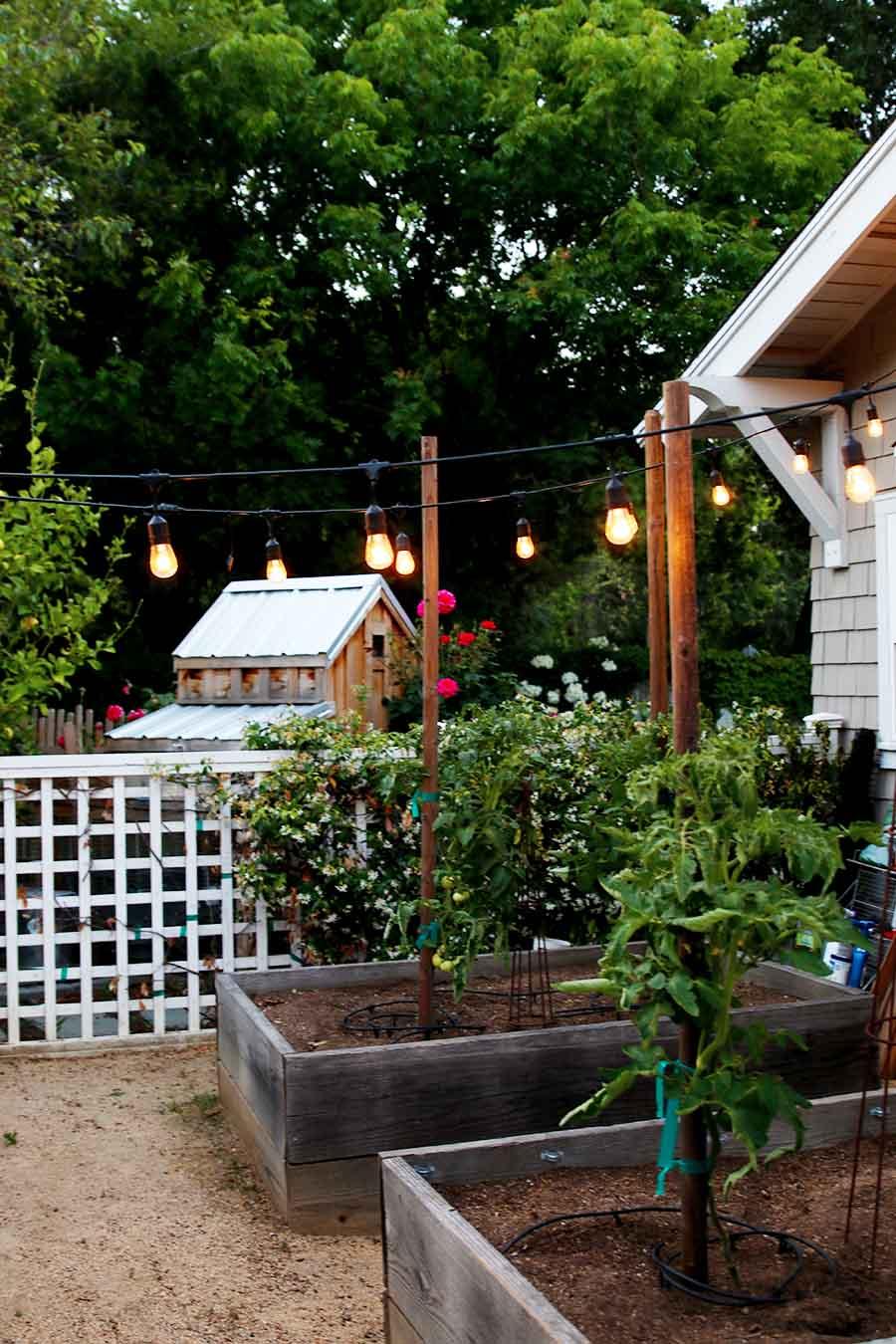 napa style backyard