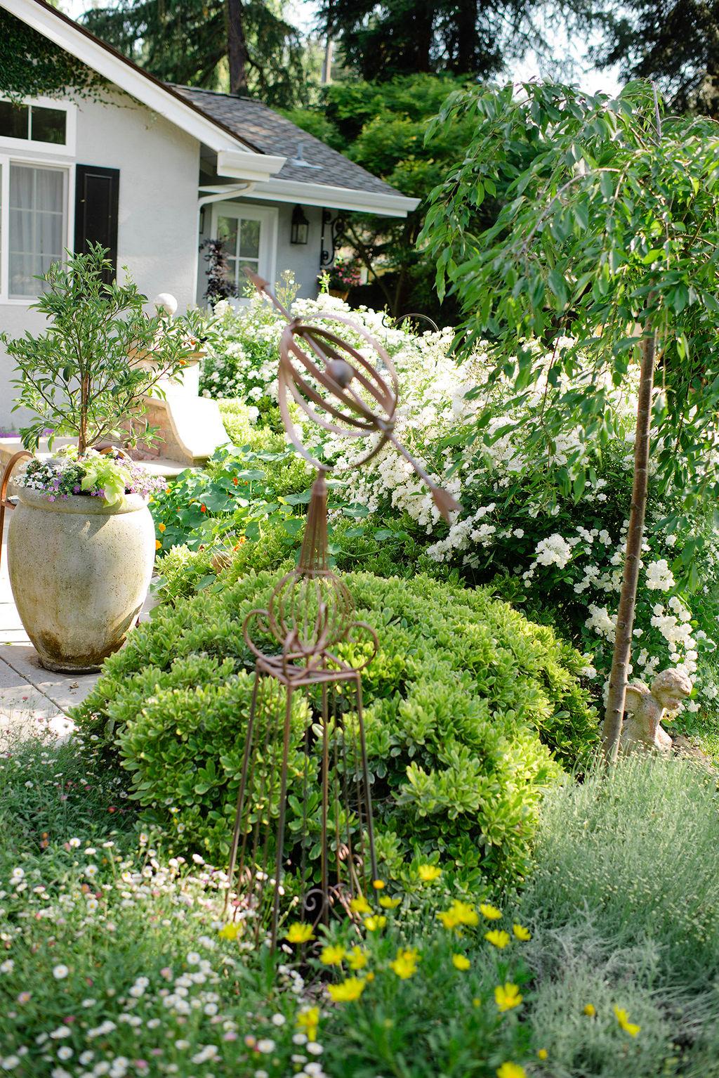 Modern Glam & Unique Container Gardening Ideas - Modern Glam