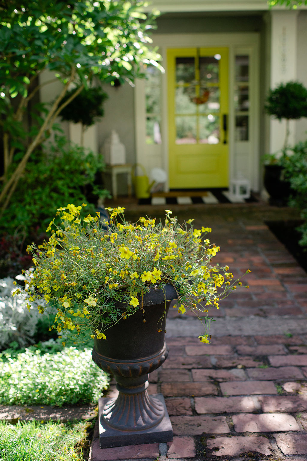 flower pot gardening ideas