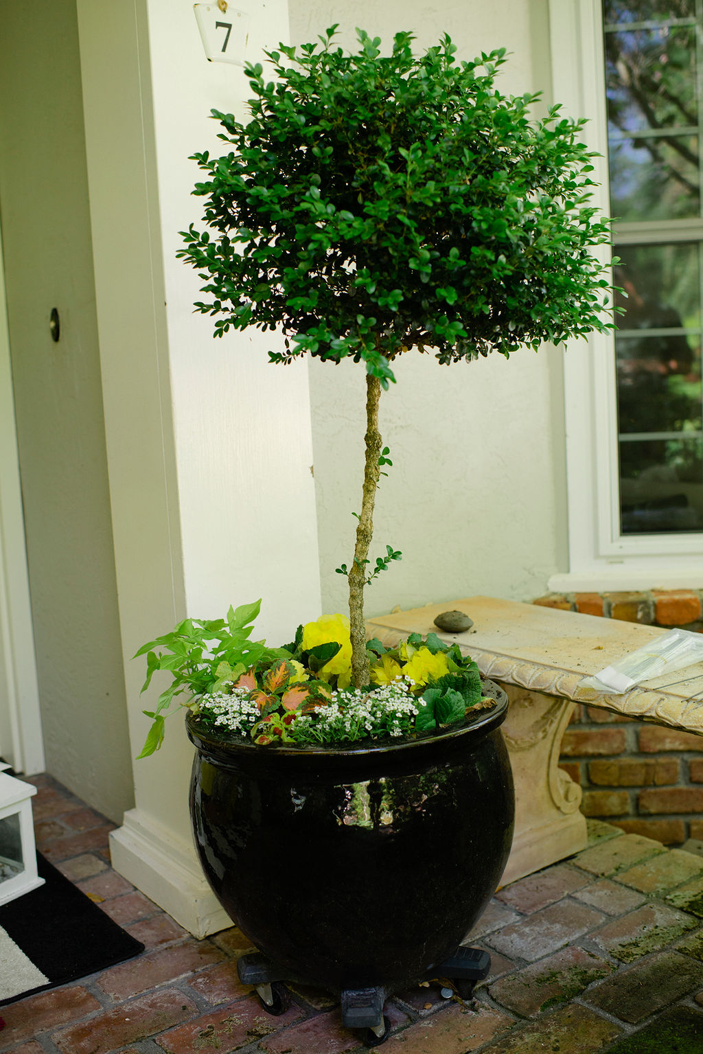 potted flower ideas