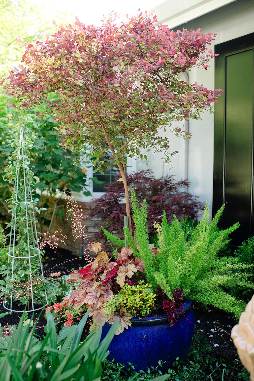 Unique Container Gardening Ideas Modern Glam
