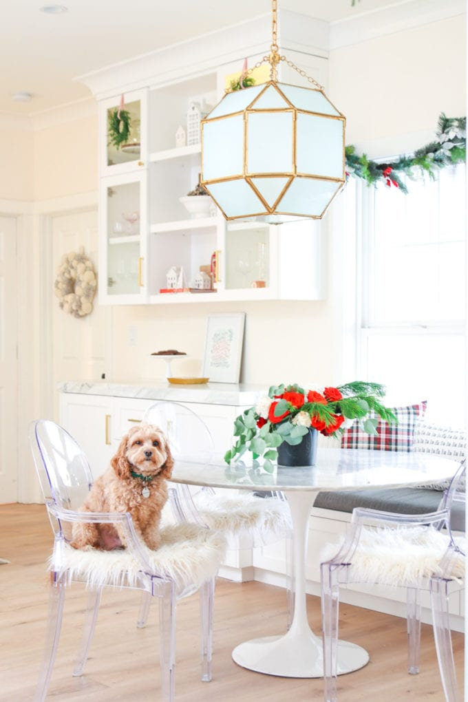 white kitchen with dog