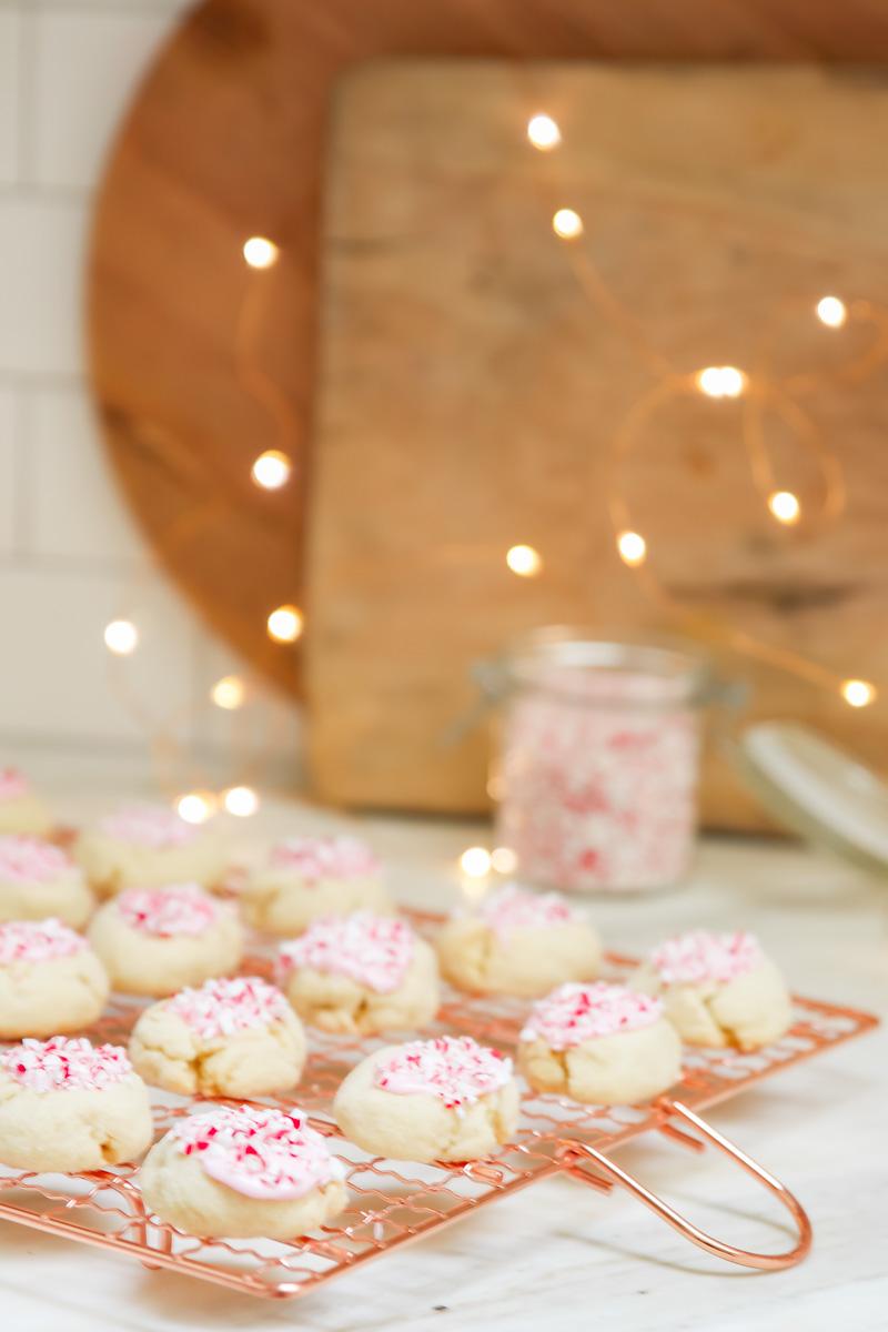 fun christmas cookie recipe