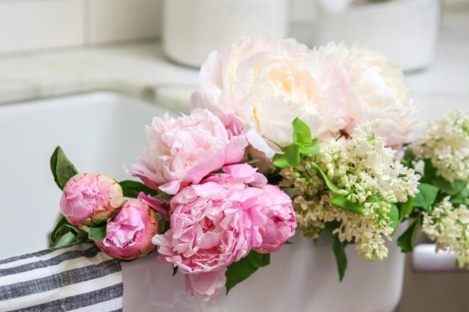 tips and tricks for peony arrangements