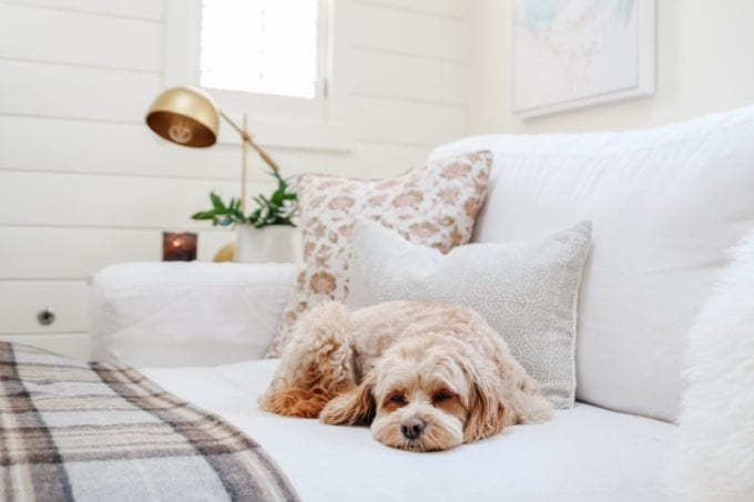 cozy minimalist fall home decor