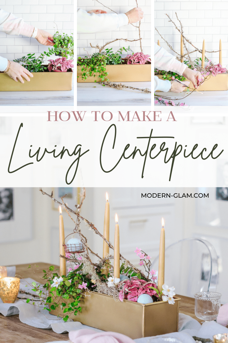 how to make a living centerpiece via @modernglamhome
