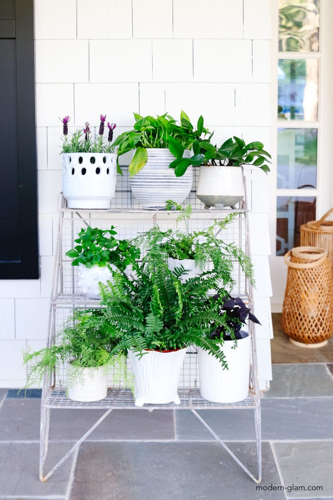 potting rack