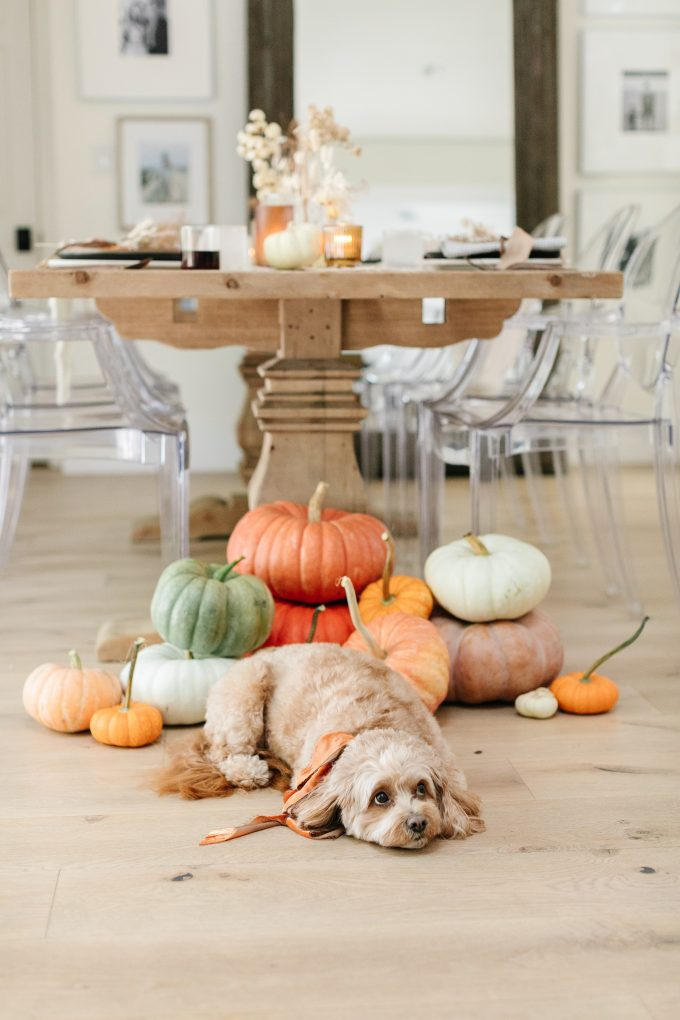 easy thanksgiving table setting